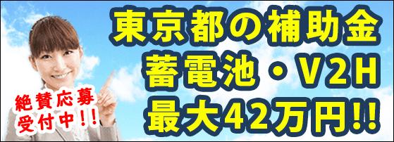 家庭用蓄電池の東京都の補助金