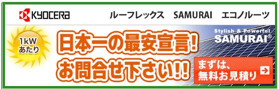 京セラ エコノルーツ243w